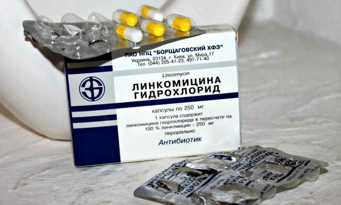 Линкомицин от флюса