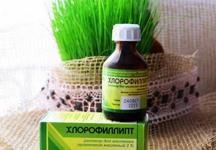 Применять раствор Хлорофиллипта от флюса