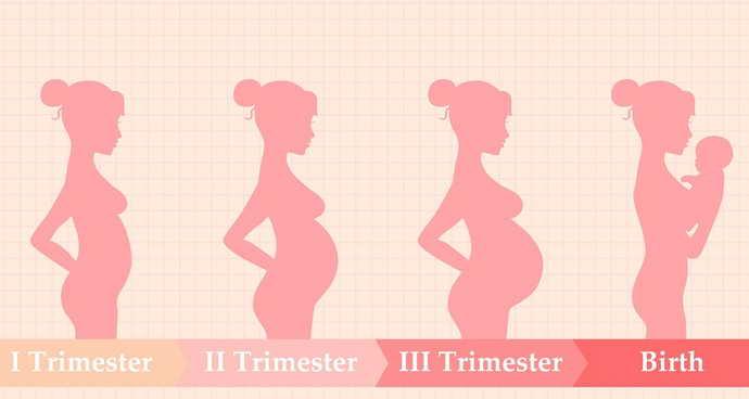брекеты беременным запрещено устанавливать в первый и третий триместры