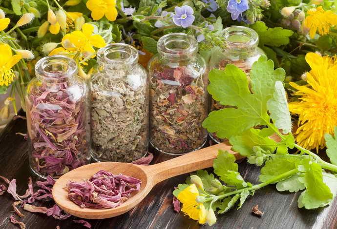 Лекарственные травы при глоссите